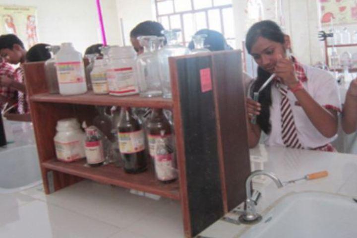 St Antonys School-Chemistry Labs
