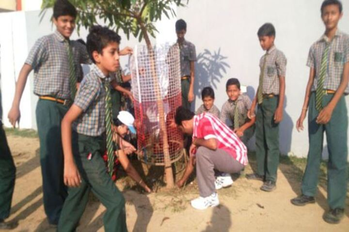St Michaels School-Planting Tree