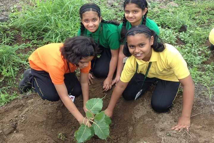 Akshara International School-Others plantation