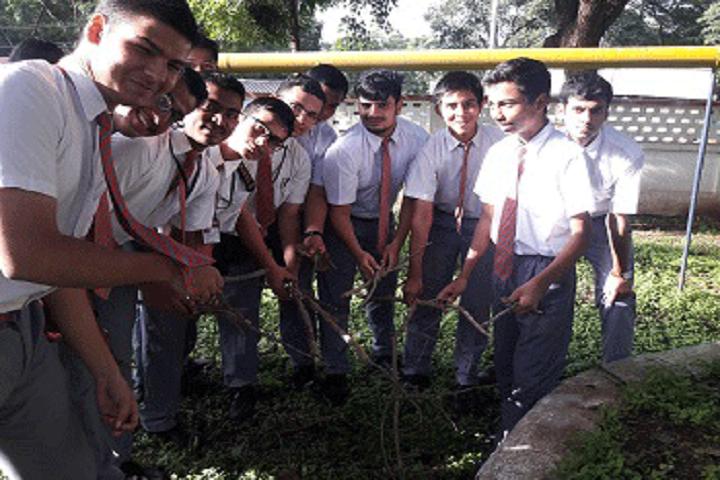 Army Public School-Plantations