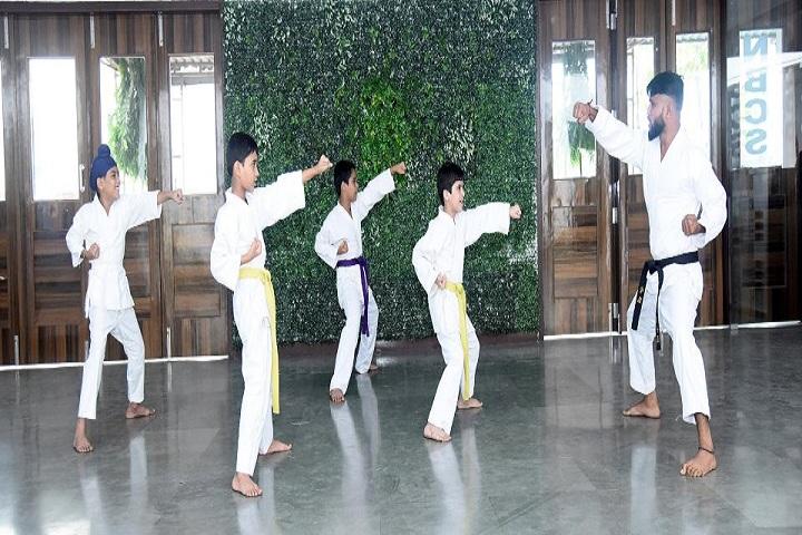 ASP Public School-Karate