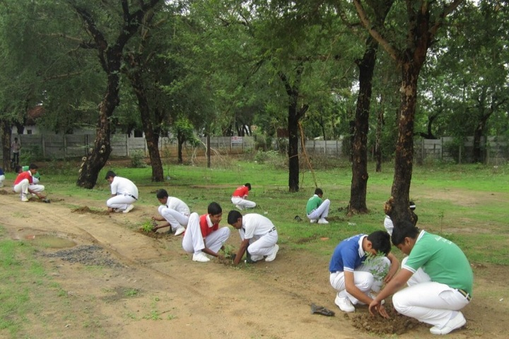 Ballarpur Public School-Tree Plantation