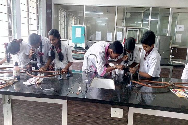 Bapusaheb D D Vispute Primary English School-Laboratory