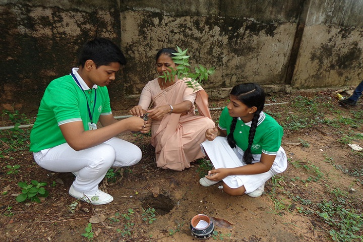 Dilsagram Convent English Medium School-Tree Plantation