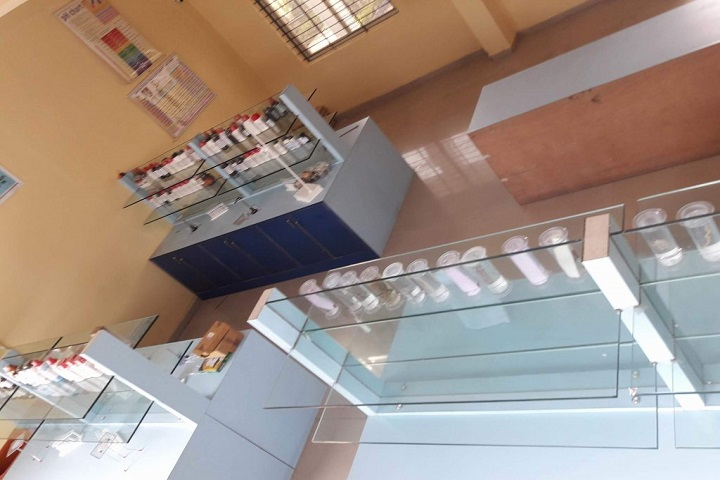 Dnyaneshwar Public School-Chemistry Lab