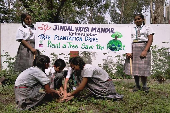 Jindal Vidya Mandir-Tree Plantation