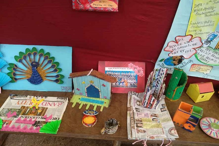 Lok Puram Public School-Exhibition