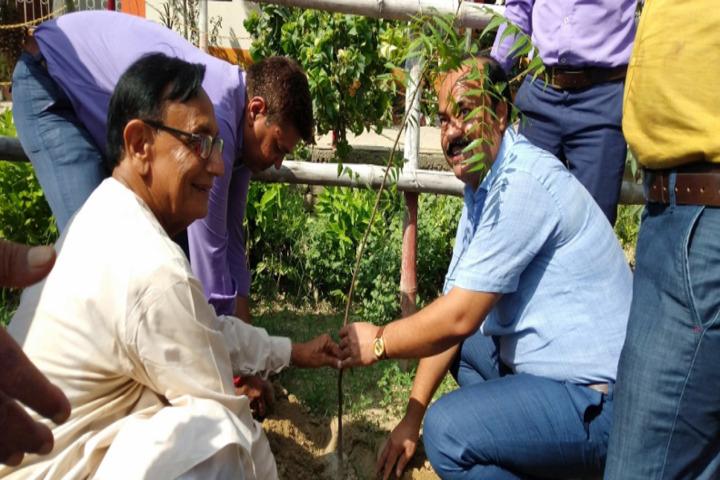 Dav Public School-Tree Plantation