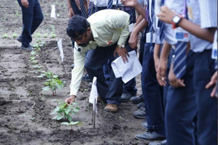 Nagarjuna Public School-Tree Plant