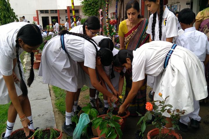 Nk Academy-Tree Plantation