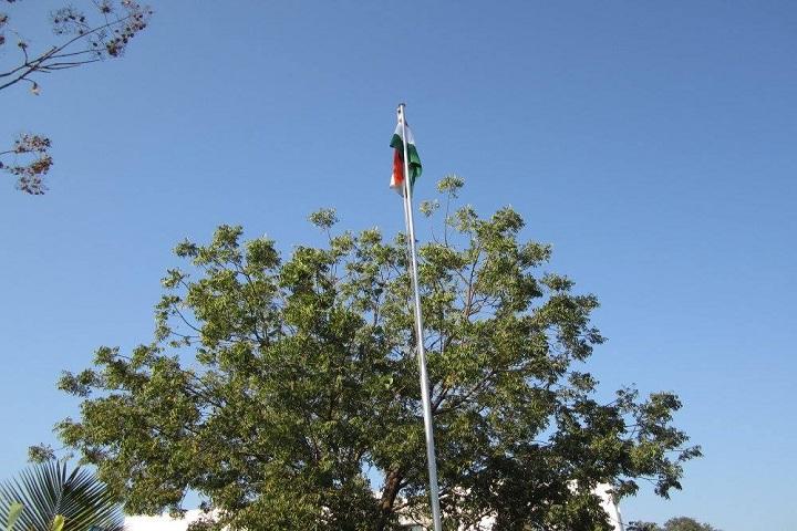 Panacea International School-Flag Hosting