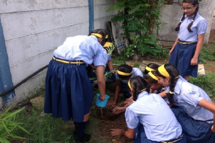 Podar International School-Tree-Plantation