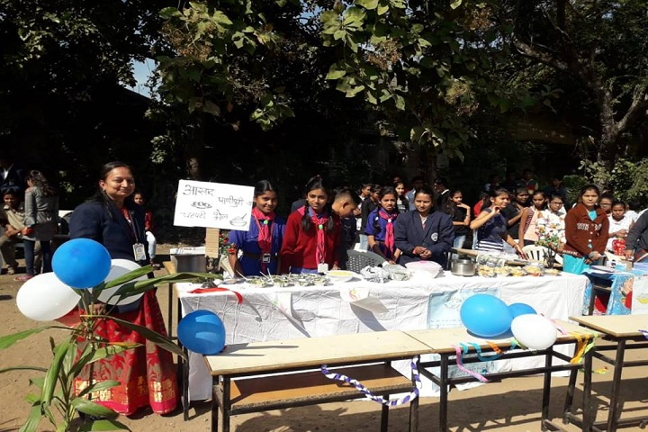 Ramabai Deshmukh Public School-Science fair