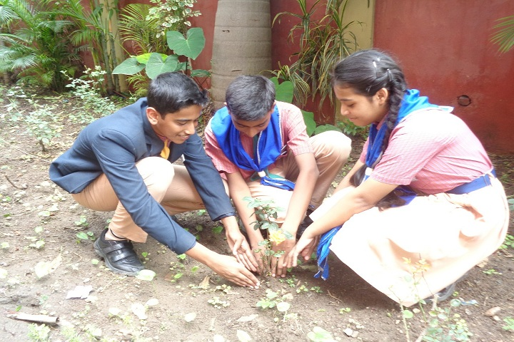 St XavierS High School-Others plantation