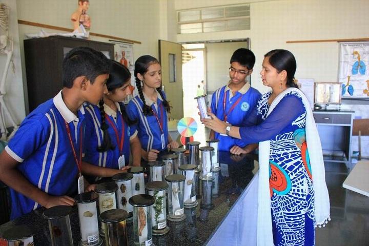 The Dwarka School-Biology Lab