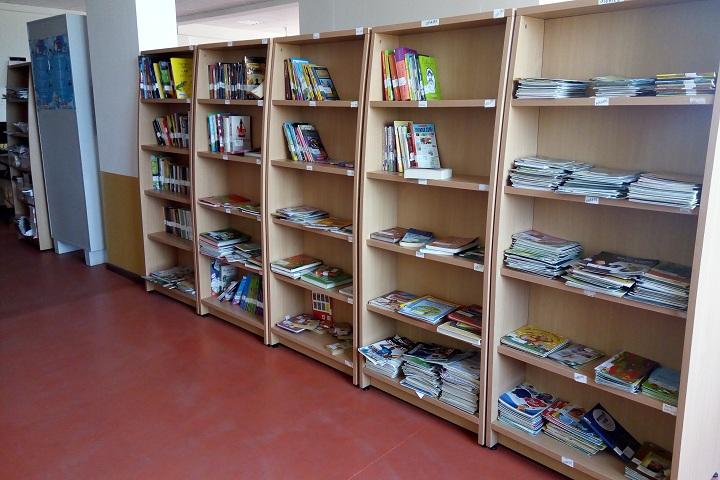 The Kalyani School-Library