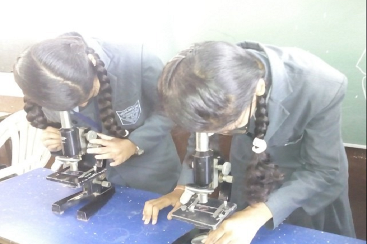 Vidya Niketan School-Science Lab Experiment