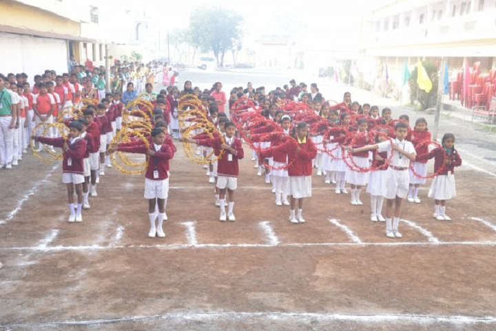 Vidya Niketan School-Sports Day Celebrations