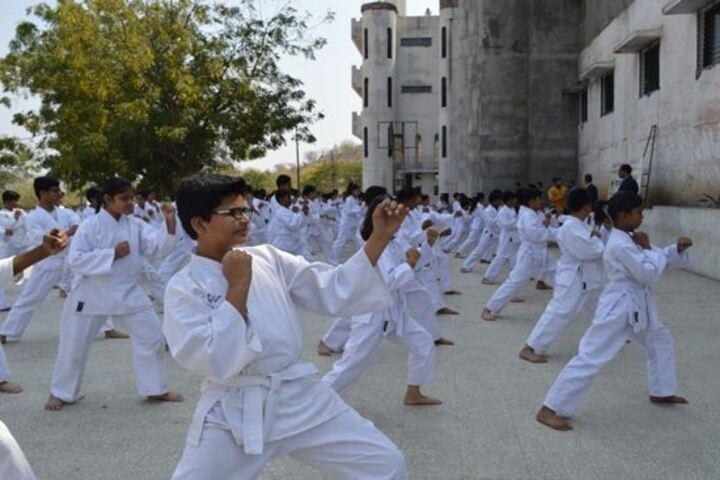 Vidya Niketan School-Karate