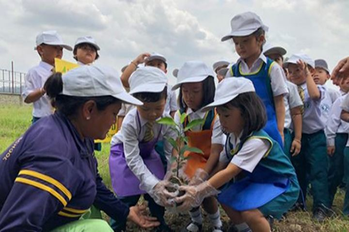 Maria Montessori Senior Secondary School-Maria Montessori Senior Secondary School-Green day