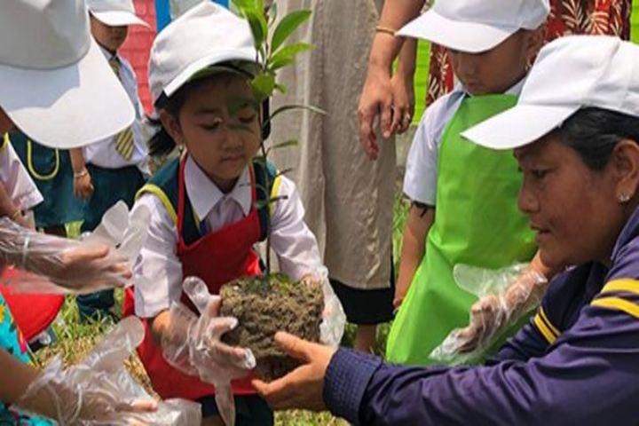 Maria Montessori Senior Secondary School-Tree plantation Day