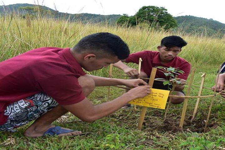 S.V.Getwell School-Tree Plantation