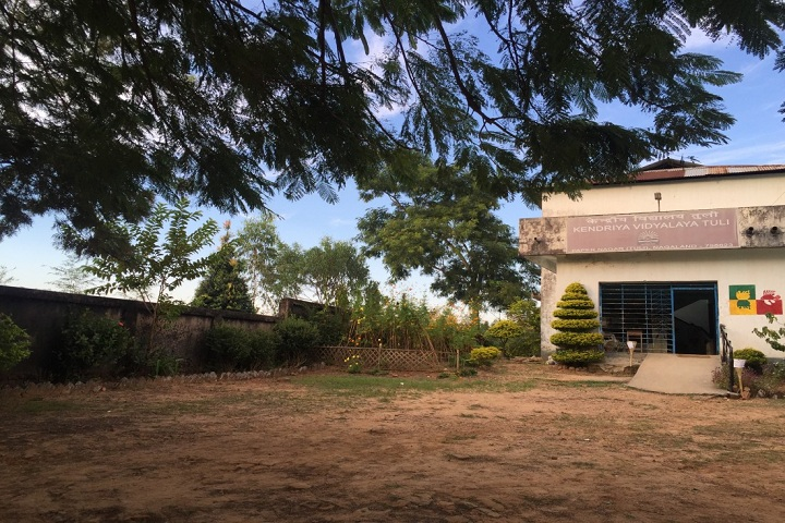 Kendriya Vidyalaya Tuli-Entrance