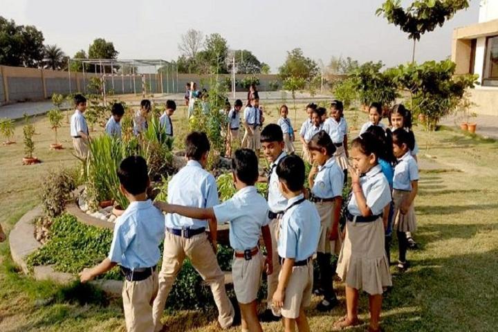 Aparna World School-Activity