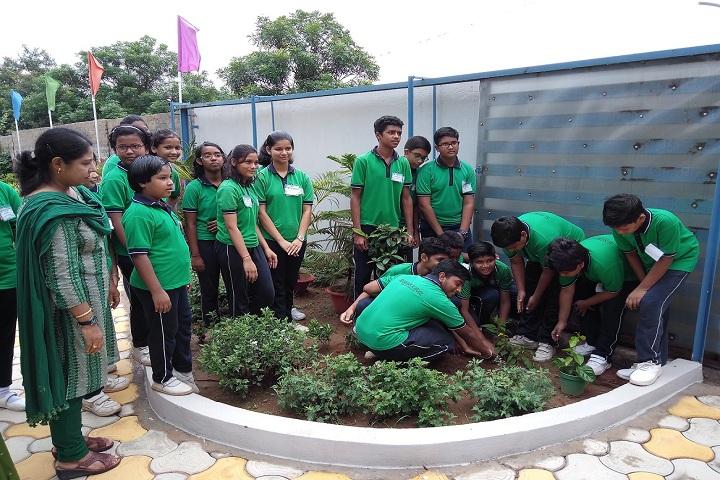Blossoms School-Plantation