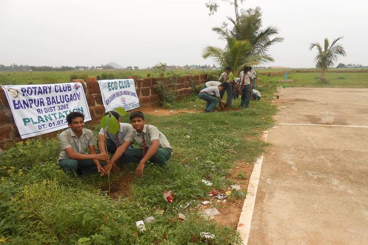 Chilkarani English Medium School-Tree Plant