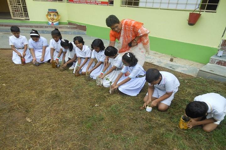 D A V Public School - Tree planting