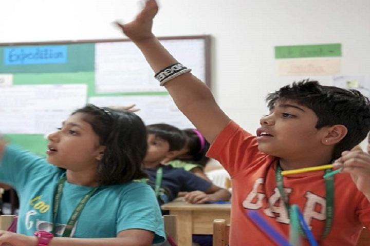 DVM Public School-Activity