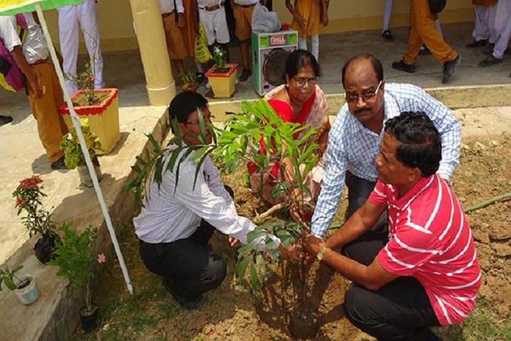 Maharishi Vidya Mandir-Tree-Plantation