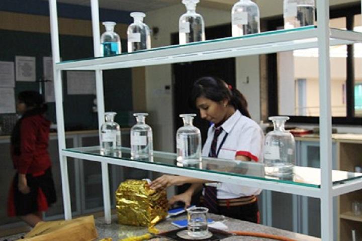 G D Goenka Public School-Chemistry Lab