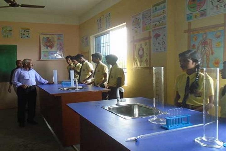 Ganga Global Public School-Chemistry Lab