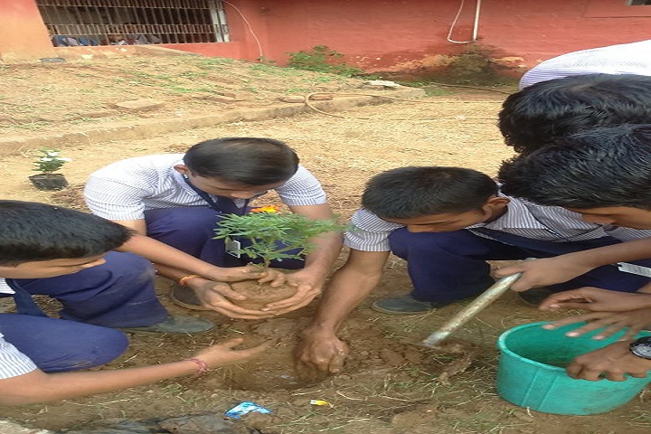 Santanu English Medium School-Plantation