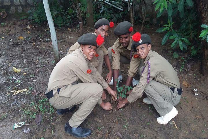 Shree Dadiji Mandir Trust Prabhavati Public School-Plantation