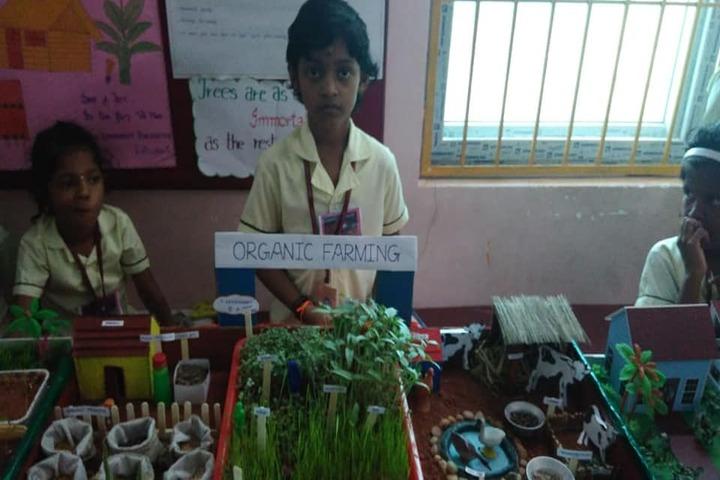 Aditya Vidyashram-Science Exhibition