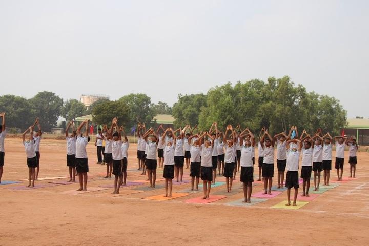 The Study School-International Yoga Day