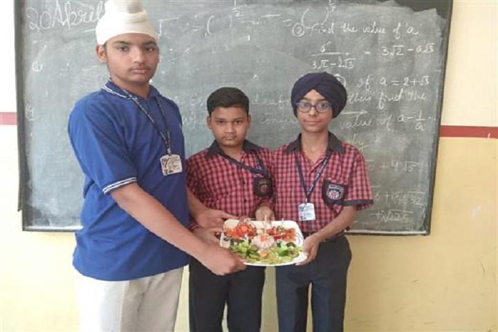 ajit karam singh international public school-salad