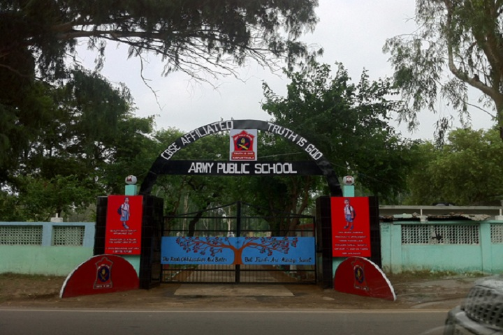 Army Public School- Entrance