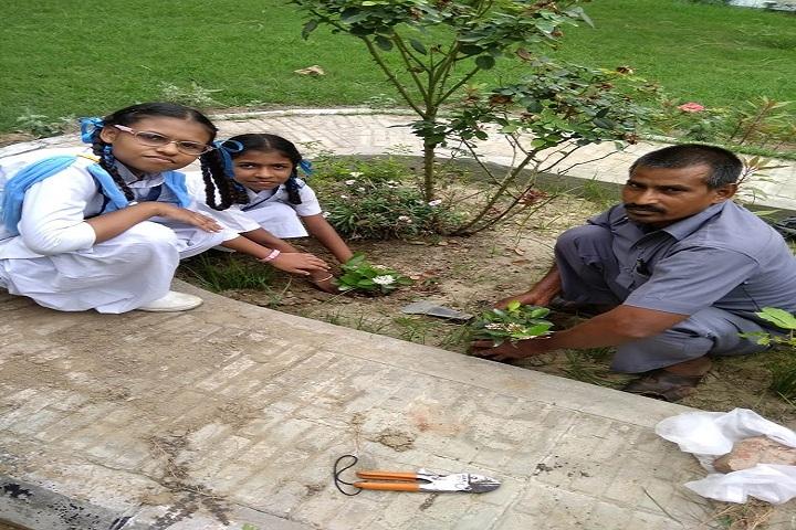 Baba Gandha Singh Public School-Others plantation
