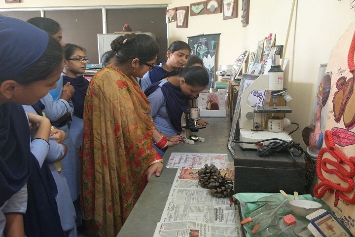 Bhai Nand Lal Public School-Laboratory biology