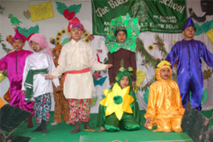 Buds Senior School-Fancy Dress