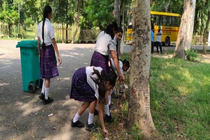 Cambridge International School-Swachta Abhiyan