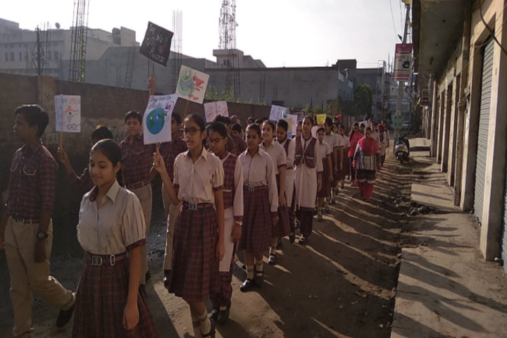 DAV Centenary Senior Secondary Public School-Rally