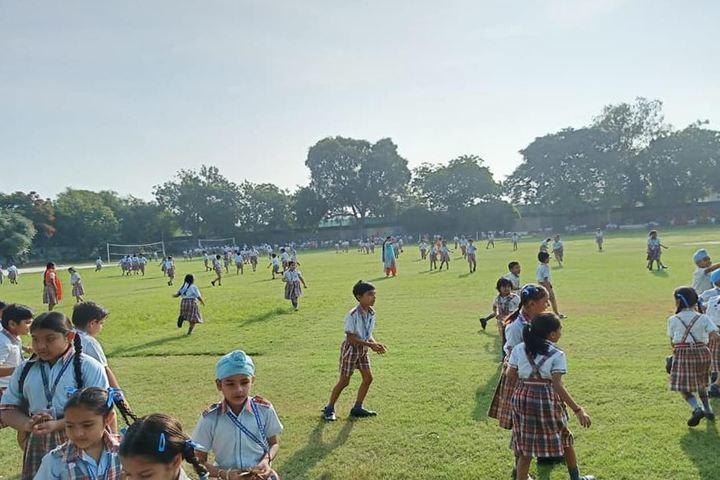 D C Model Senior Secondary School-Play Ground