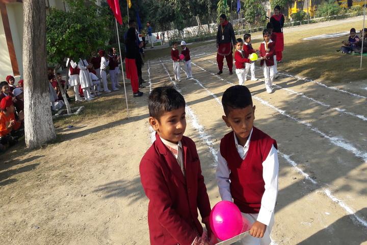 D V M Public School-Game