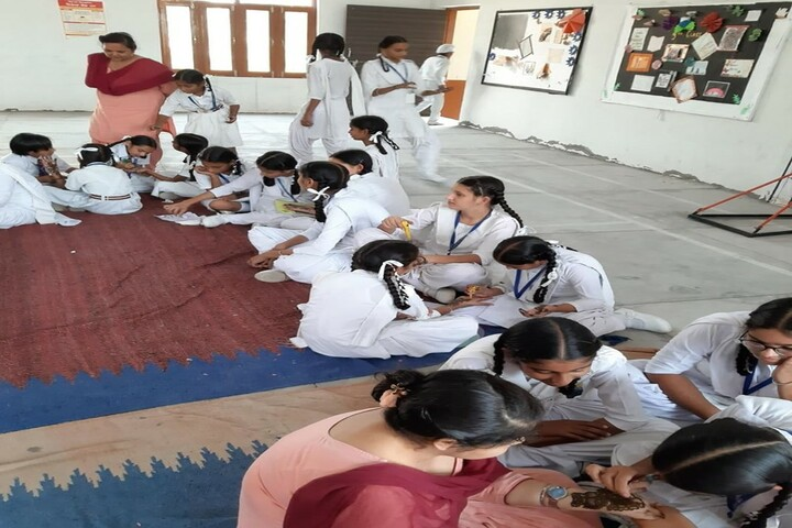 D V M Public School-Mehndi Function