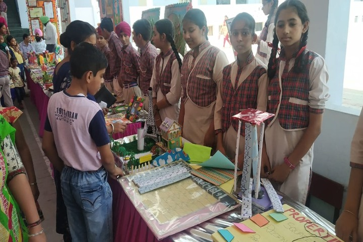 DAV Senior Secondary Public School-Exhibition